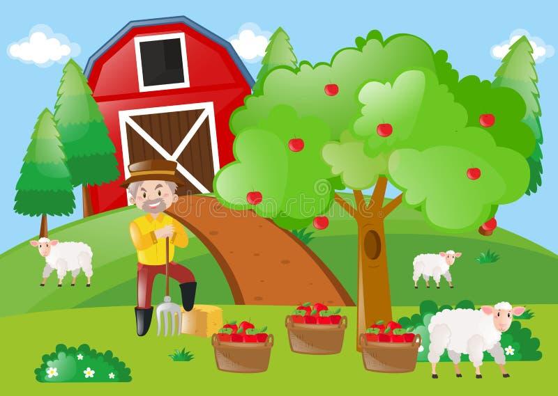 Fazendeiro que está pela árvore de maçã na exploração agrícola ilustração royalty free