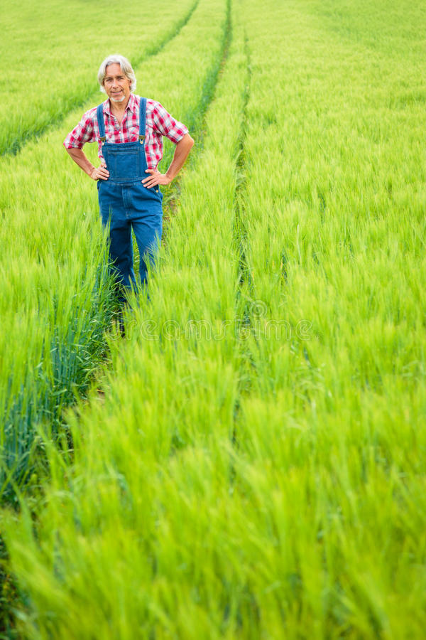 Fazendeiro Standing In um campo foto de stock