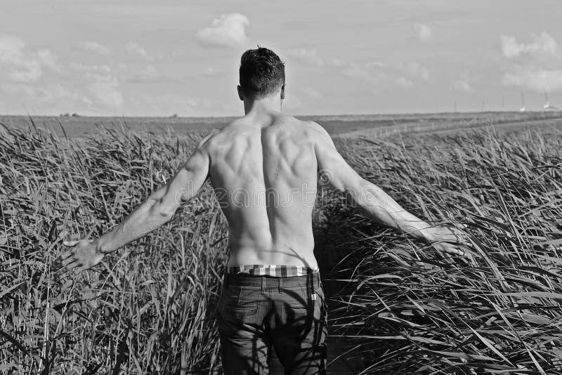 Fazendeiro vestido no short que verifica sua colheita