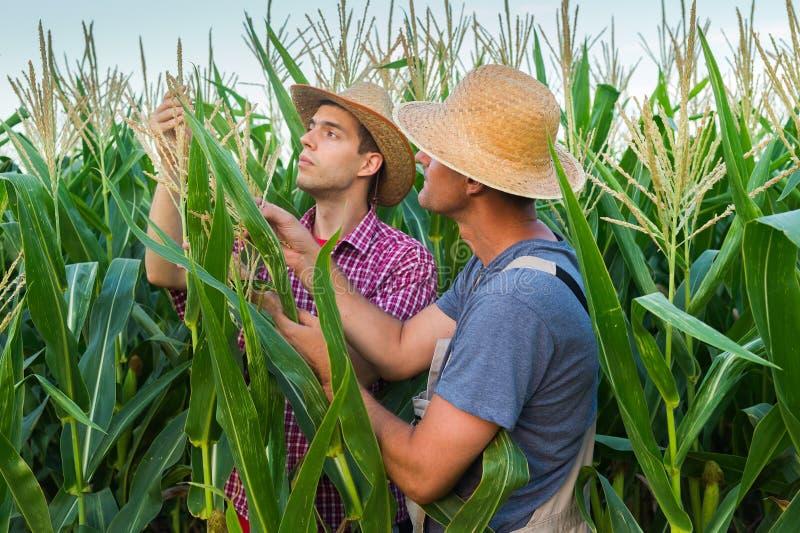fazendeiros imagem de stock