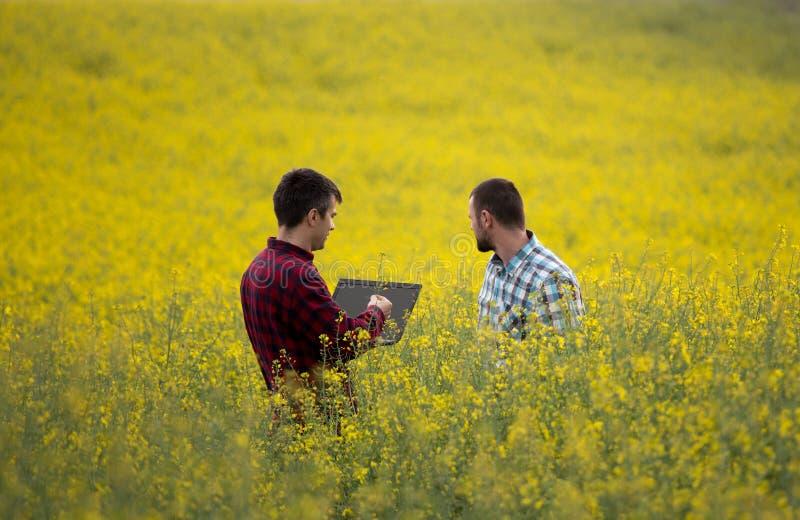 Fazendeiros com o portátil no campo rapessed fotos de stock royalty free