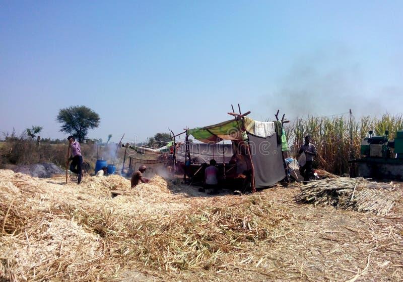 Fazendeiros que fazem o açúcar mascavado (jaggery) em india rural foto de stock royalty free