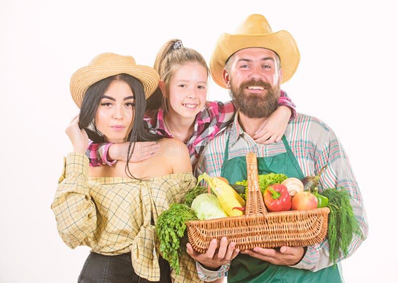 Fazendeiros r?sticos da fam?lia orgulhosos da colheita da queda crescida com amor Os pais e a filha comemoram o festival da colhe fotos de stock