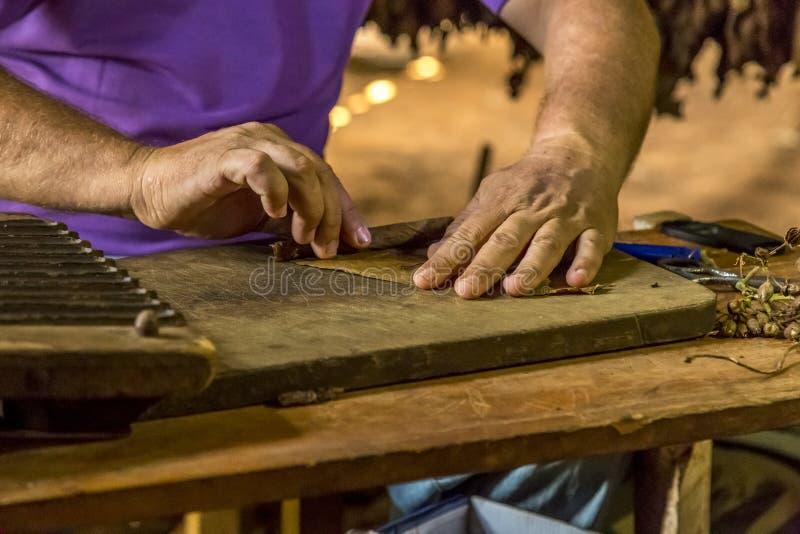 Fazendo charutos em Vinales, Cuba #16/21 imagem de stock royalty free