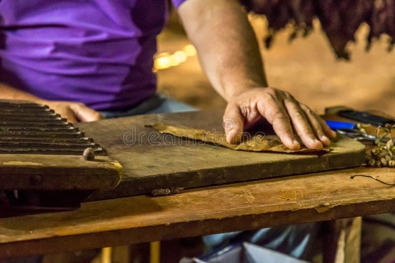 Fazendo charutos em Vinales, Cuba #15/21 imagens de stock