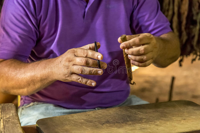 Fazendo charutos em Vinales, Cuba #12/21 fotografia de stock royalty free