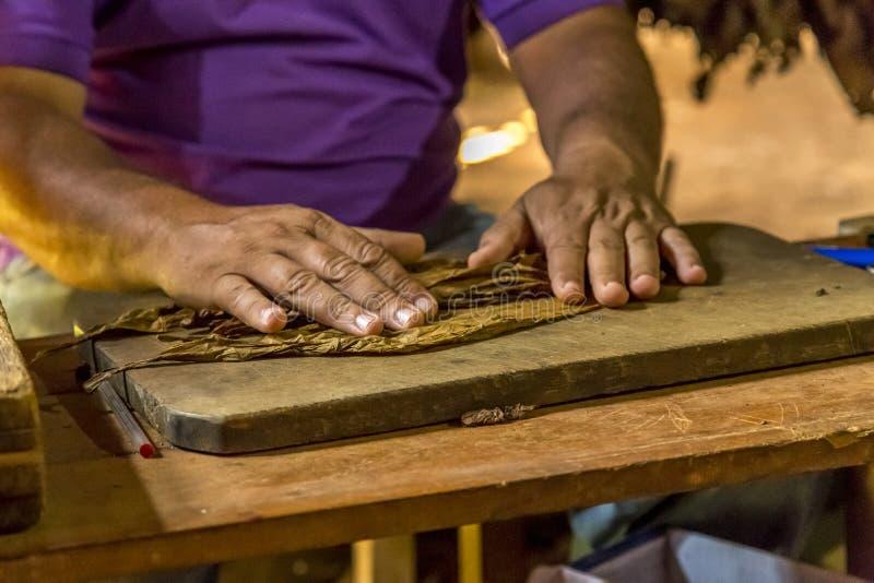 Fazendo charutos em Vinales, Cuba #5/21 foto de stock royalty free