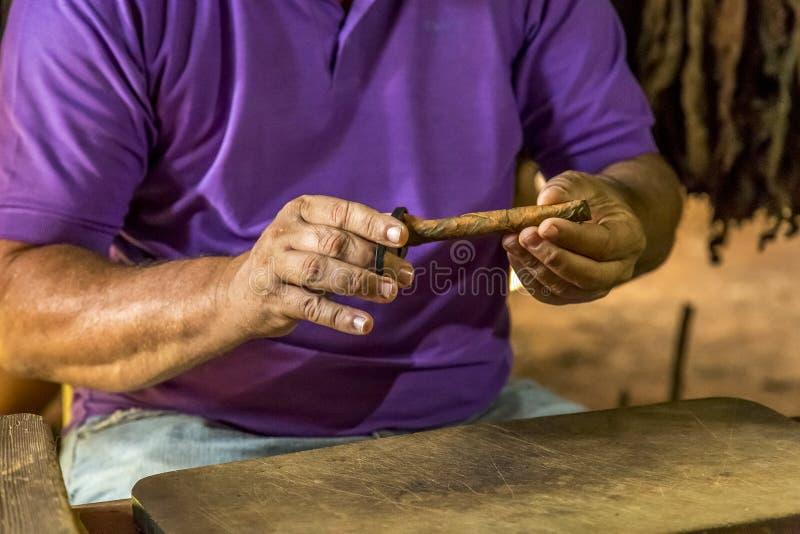 Fazendo charutos em Vinales, Cuba #13/21 imagens de stock royalty free
