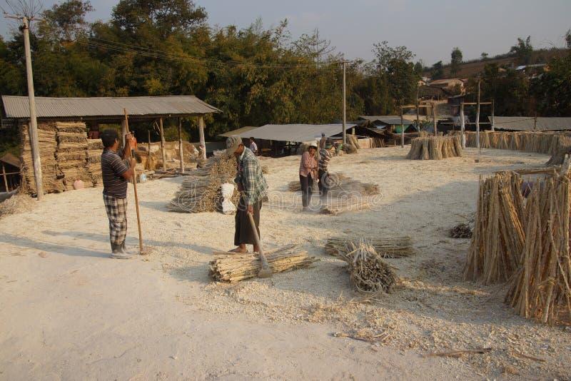 Fazendo o papel de bambu foto de stock