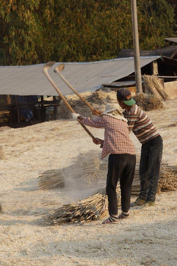 Fazendo o papel de bambu fotografia de stock