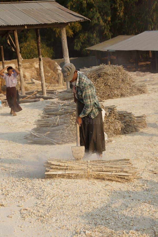 Fazendo o papel de bambu foto de stock royalty free