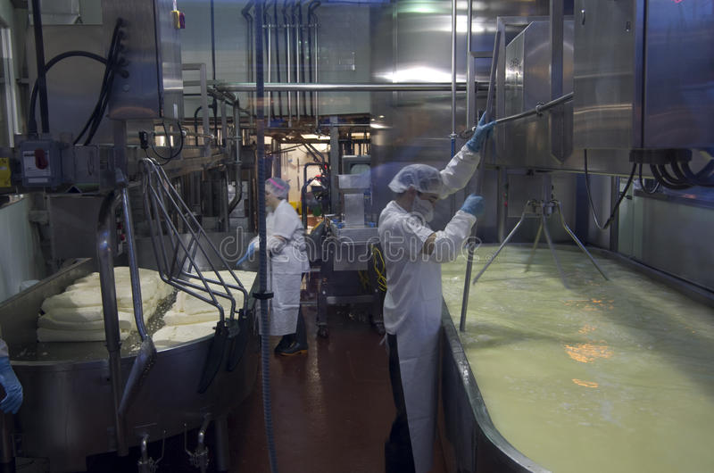 Fazendo o queijo imagens de stock royalty free