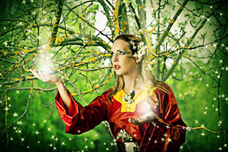 Fe i skog royaltyfria bilder