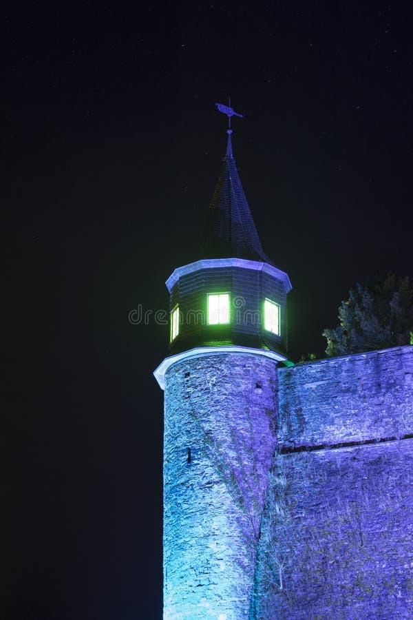 Fe-saga slott royaltyfria foton