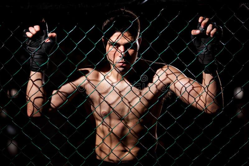 Fearles MMA Myśliwski przygotowywający walka fotografia royalty free