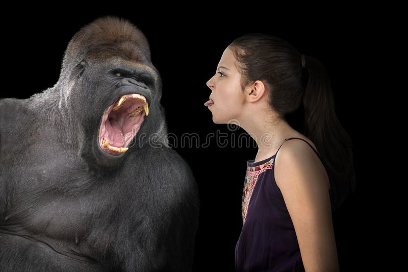 Fearless young girl with an angry gorilla. Fearless young girl sticking her tongue out at an angry gorilla on a black background stock photos