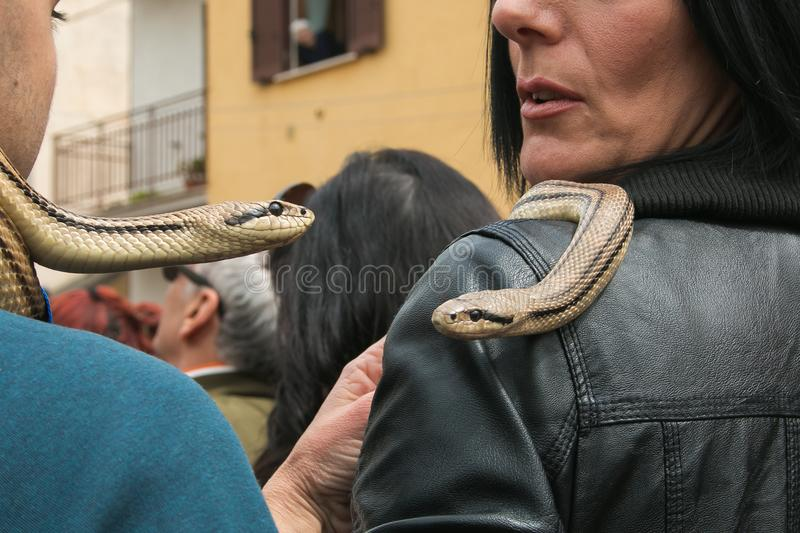 The feast of Saint Dominc, Cocullo, portrait of two snakes on the shoulder of people royalty free stock photo