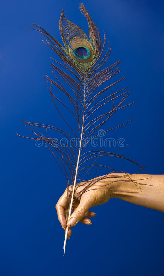 Download Feather Stock Images - Image: 13025384