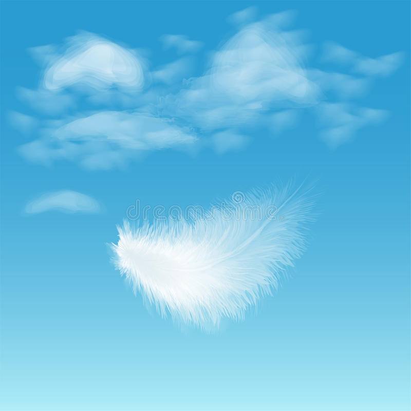 Free Feather Stock Photography - 29153352