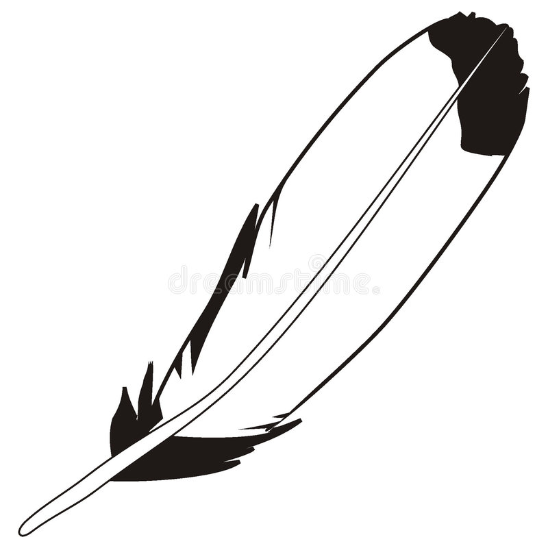 Download Feather stock vector. Illustration of picture, figure - 3669929