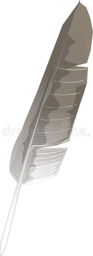 Download Feather stock illustration. Image of comic, quill, cartoon - 54752