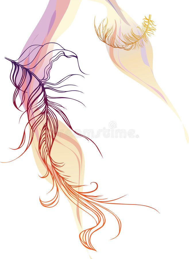 Download Feather stock vector. Illustration of animal, fantasy - 6971128