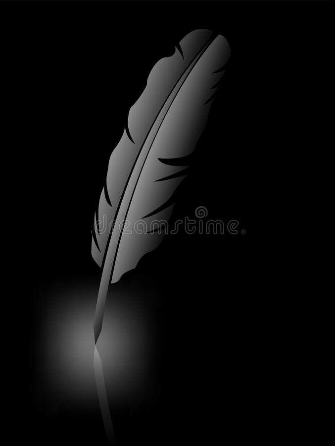 Feather on black background stock photography