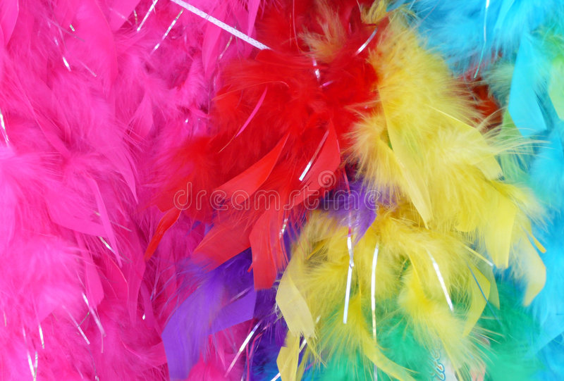 Feather Boas stock photography