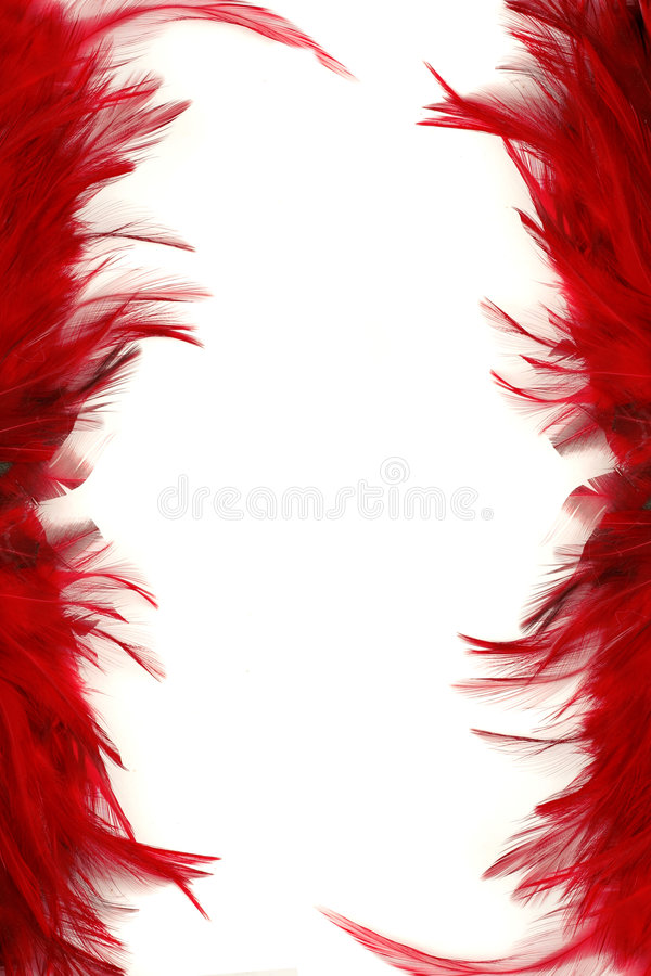 Feather borders royalty free stock photography
