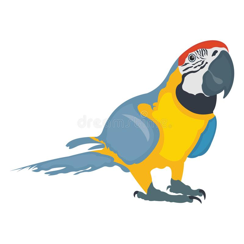 Feather creature, macaw Vector Icon vector illustration