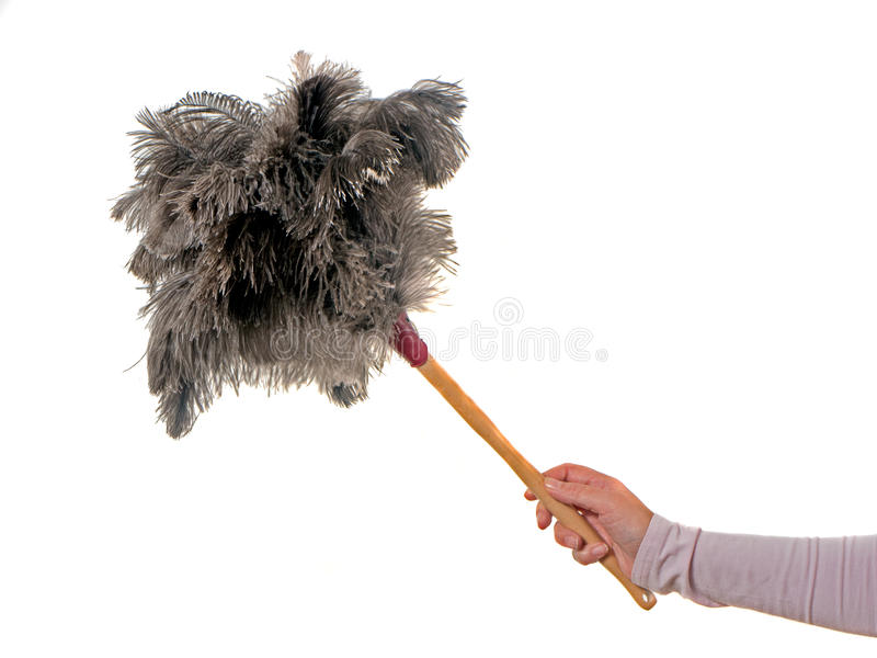 Feather duster. With female hand on white Background royalty free stock photos