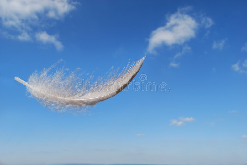 Feather floating in the sky royalty free stock image