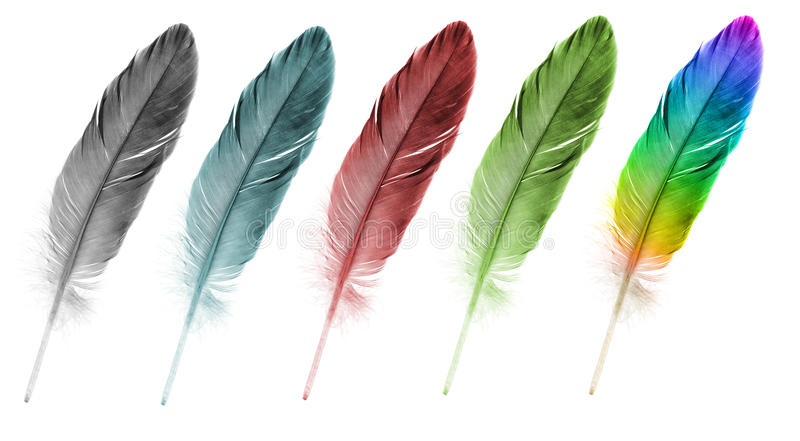 Feather pen set of abstract color stock photo