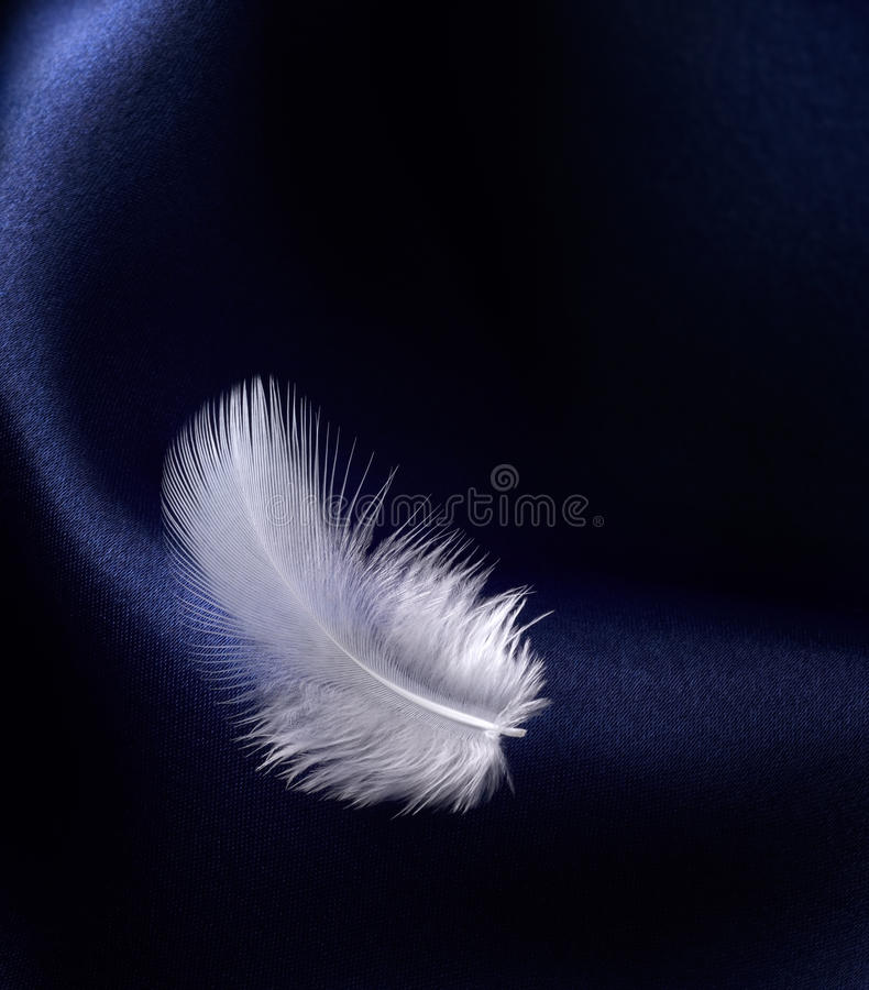 Feather with satin stock photos