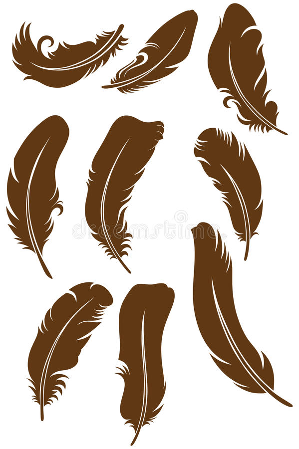 Feather Set. Doodle style. Vector