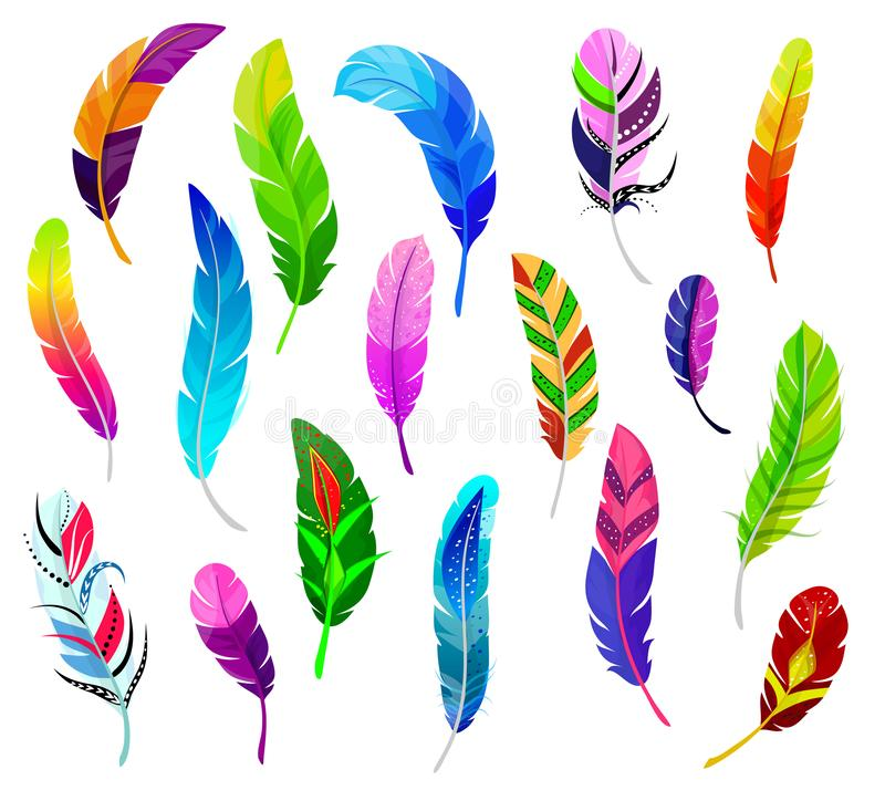 Feather vector fluffy feathering quil and colorful feathery birds plume illustration set of color feather-pen decor. Isolated on white background vector illustration