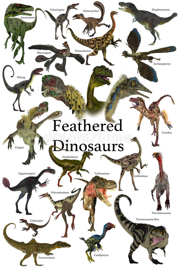 Feathered Dinosaurs. A collection of various feathered dinosaurs from different prehistoric periods of Earth`s history vector illustration