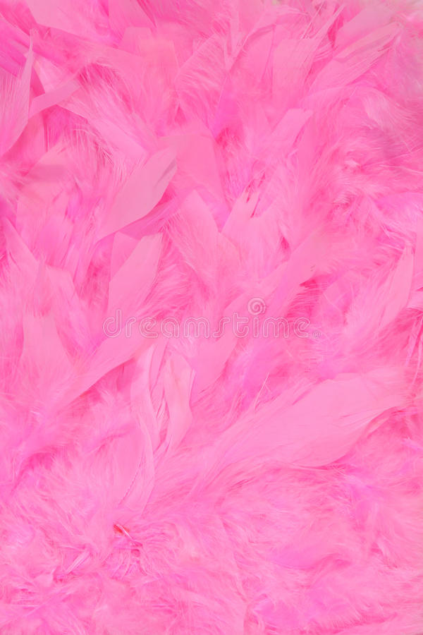 Download Feathers stock photo. Image of decoration, background - 17286890