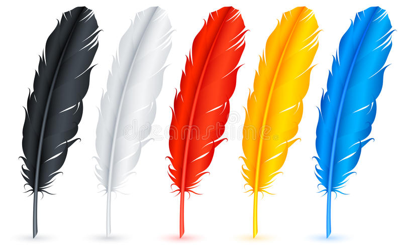 Feathers. Set of 5 color feathers