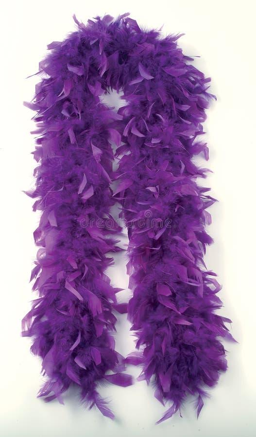 Free Feathers Stock Image - 2513541