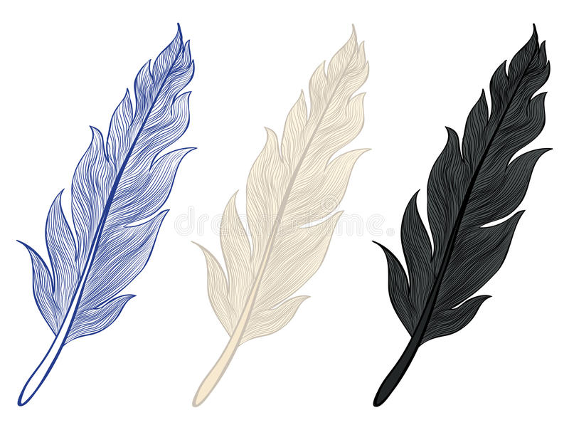 Download Feathers stock vector. Image of close, icon, curve, up - 27249380
