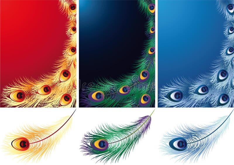 feathers διανυσματική απεικόνιση
