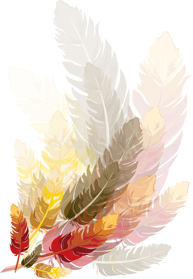 Feathers royalty free illustration