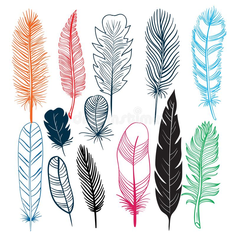 Feathers birds colors designs stock illustration