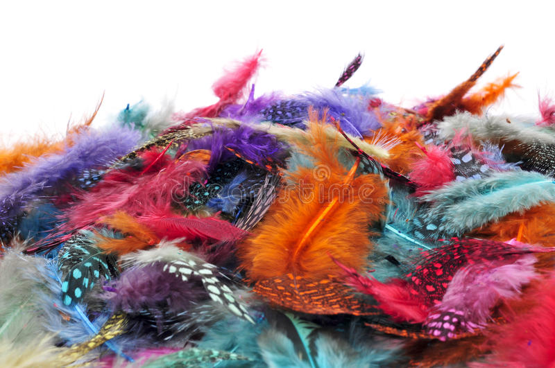 Feathers of different colors royalty free stock photography