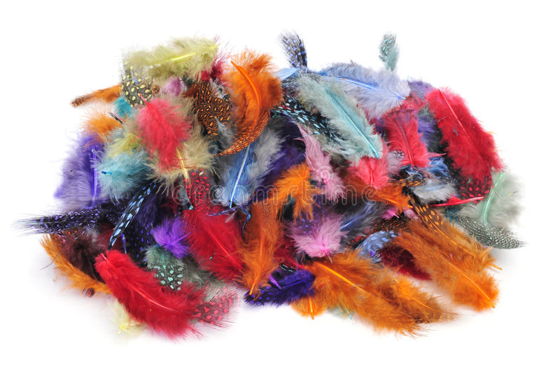 Feathers of different colors stock photo