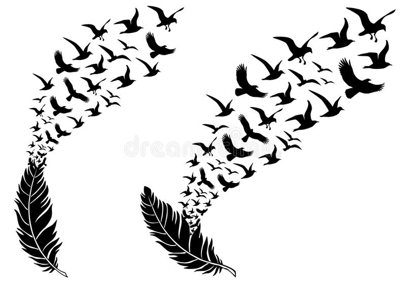 Feathers with flying birds, vector royalty free illustration