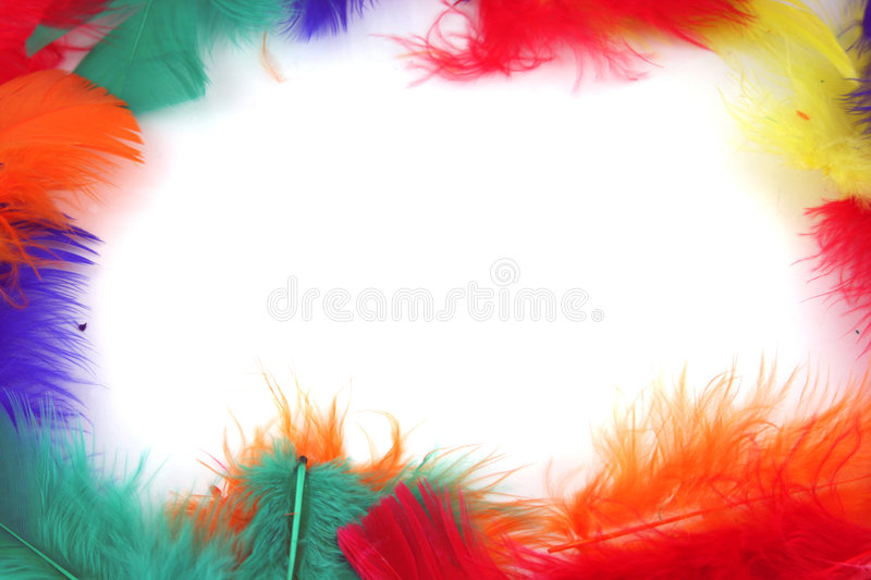 Feathers forming a frame. Feathers Isolated on white - Ideal Border or Background royalty free stock image