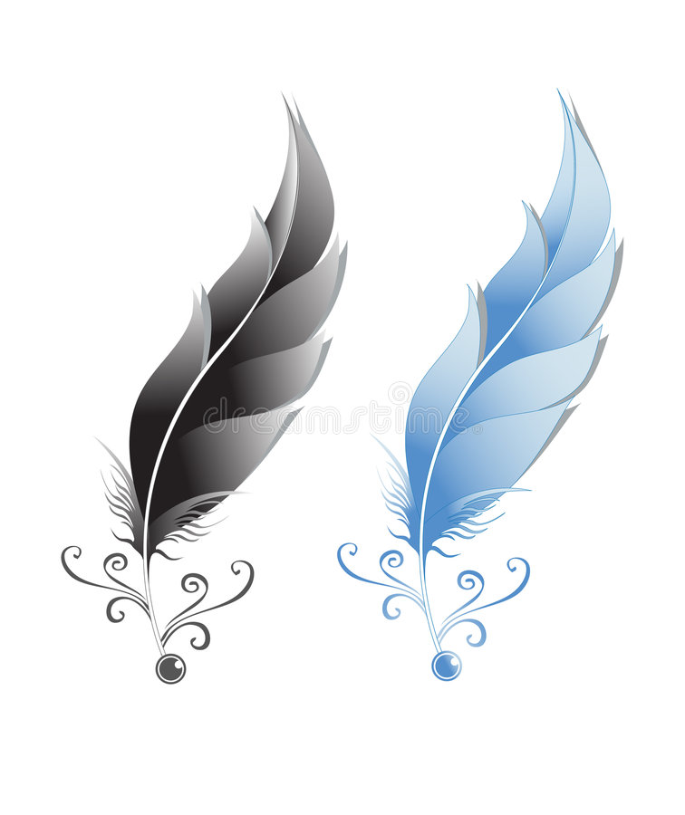 Feathers illustration vector illustration