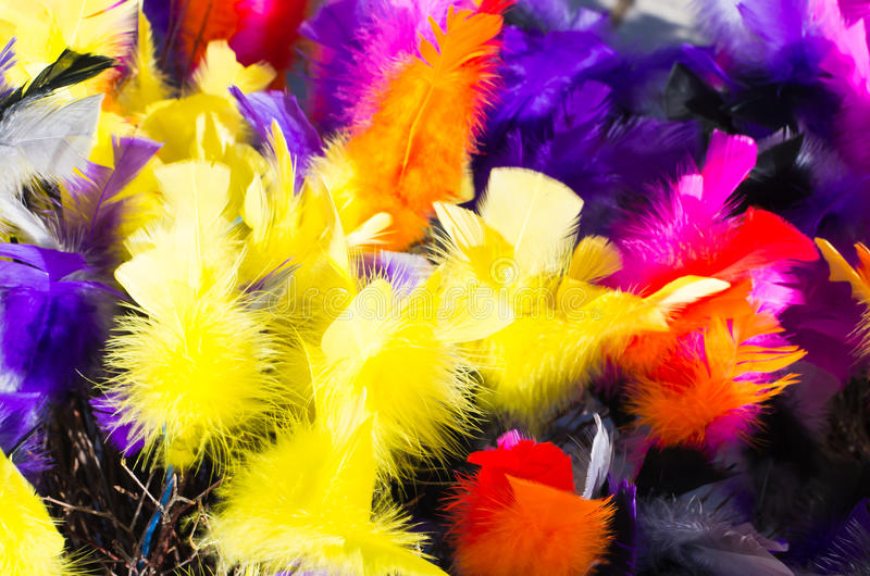 Feathers in many colors royalty free stock photography